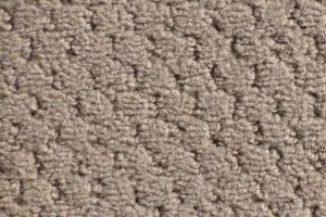 commercial carpet sample