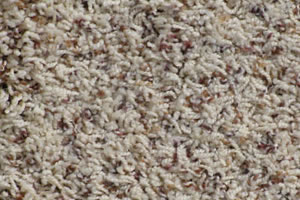 Freize Carpet Sample