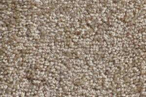 Windward Textured Carpet Samples
